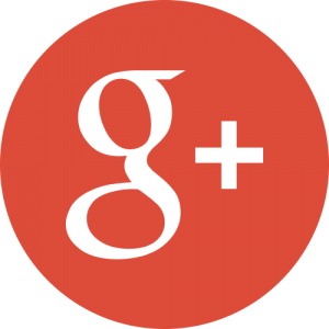 Google Plus Link to SEO & Digital Marketing Consultant Singapore, Timotheus Lee