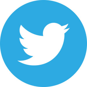 Twitter Link with SEO & Digital Marketing Consultant Singapore, Timotheus Lee